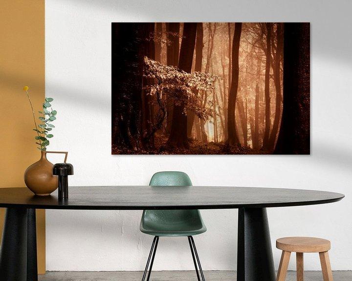 Sfeerimpressie: Mistig bos met herftsbladeren (bruintinten) van Mark Scheper