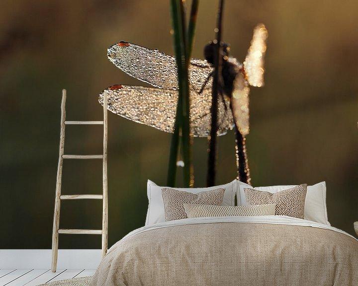 Beispiel fototapete: Libel in ochtendlicht von Astrid Brouwers