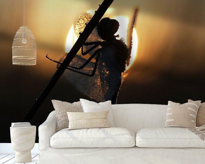 Sfeerimpressie behang: Libel in tegenlicht tijdens zonsopkomst. van Astrid Brouwers