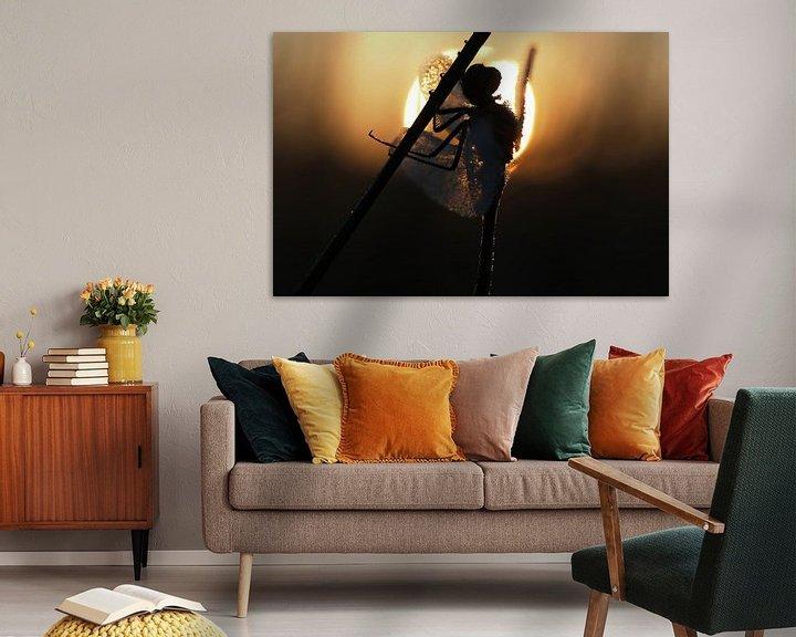 Sfeerimpressie: Libel in tegenlicht tijdens zonsopkomst. van Astrid Brouwers