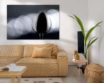Grote kaardebol met lichtvlekken sur Douwe Schut