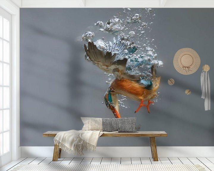 Beispiel fototapete: Eisvogel - Gewinner des National Geographic! Eisvogelweibchen in Aktion, unter Wasser tauchend (bis  von Dirk-Jan Steehouwer