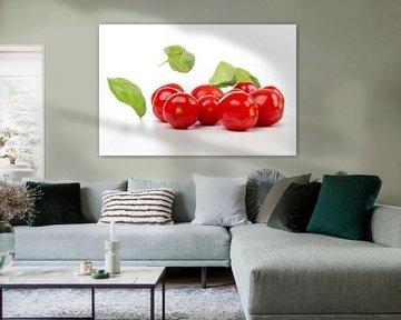 Tomaten en basilicum van Karin de Jonge