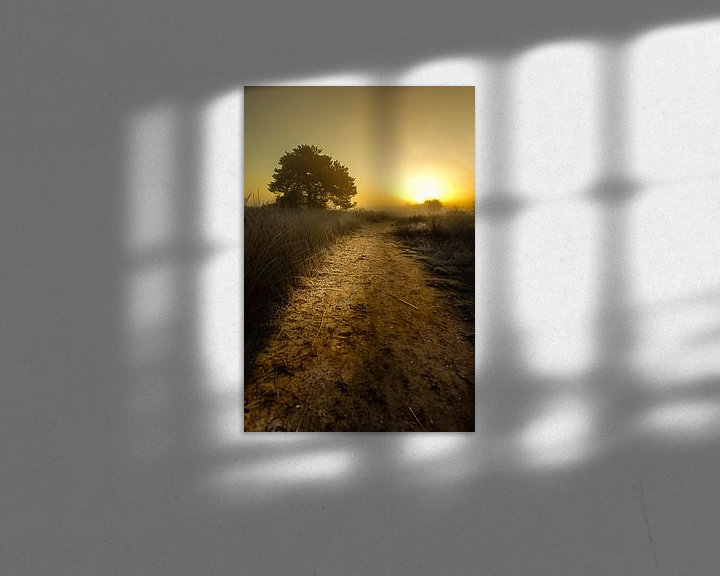 Sfeerimpressie: Het ontwakende landschap van Sandra Kuijpers