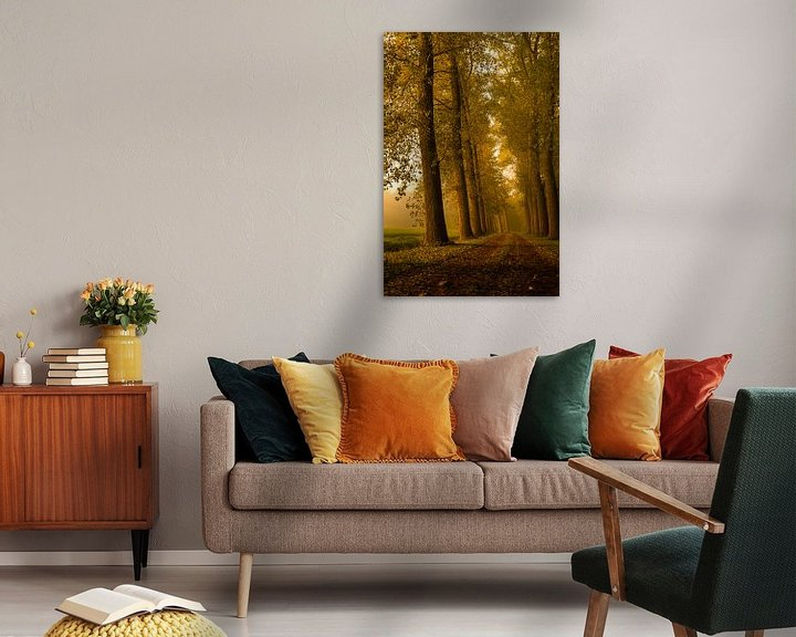 Sfeerimpressie: Ontwakend landschap van Sandra Kuijpers