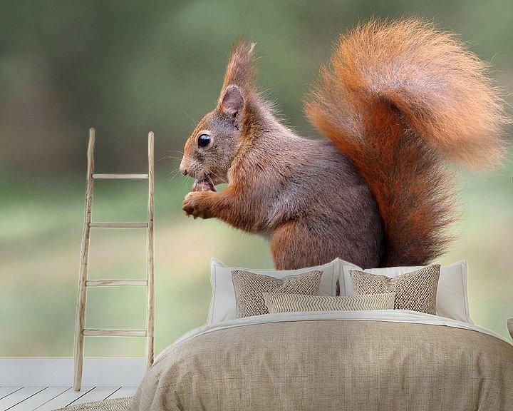 Beispiel fototapete: Eekhoorn op boomstam. von Astrid Brouwers