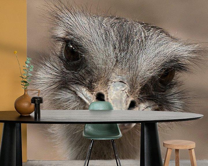 Sfeerimpressie behang: Oogcontract Struisvogel van Sandra Kuijpers