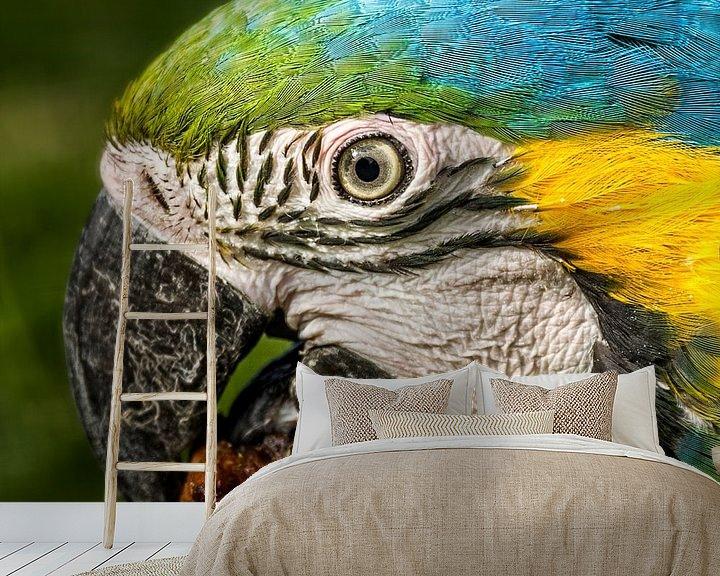 Impression: Hongerige papegaai sur Sandra Kuijpers