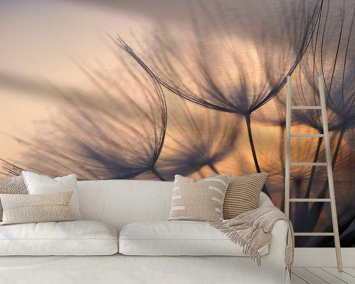 Beispiel fototapete: Zonsopkomst achter paardenbloem. von Astrid Brouwers