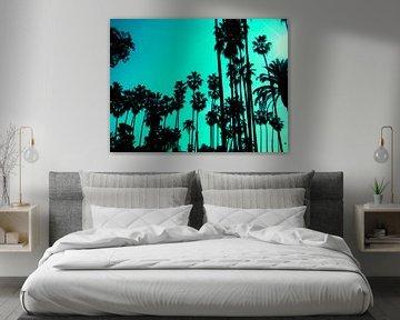 Palms van simone gablan