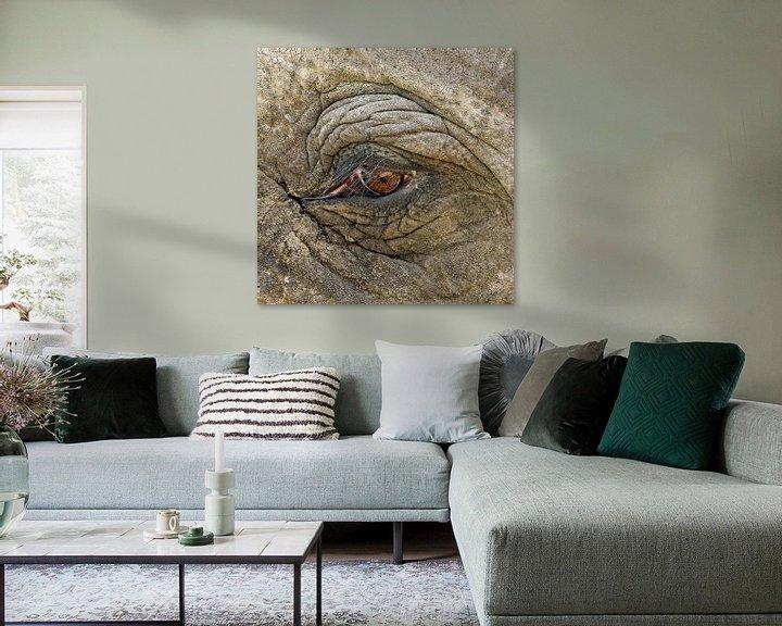 Impression: Het oog van de olifant sur Sandra Kuijpers