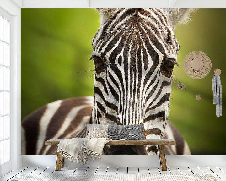 Sfeerimpressie behang: De gestreepte zebra van Sandra Kuijpers