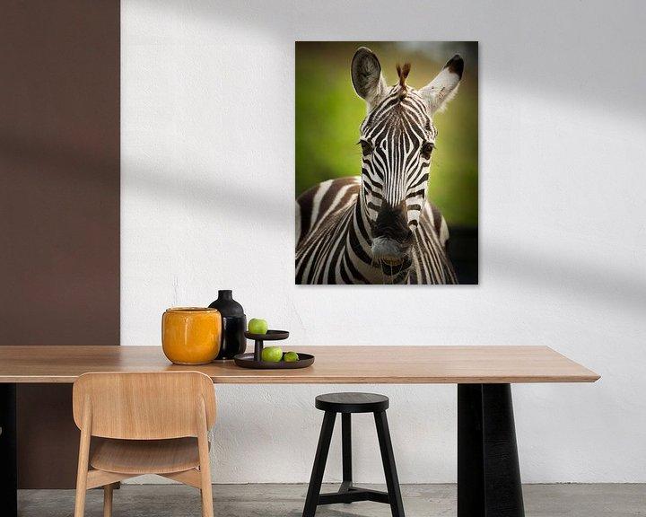 Sfeerimpressie: De gestreepte zebra van Sandra Kuijpers
