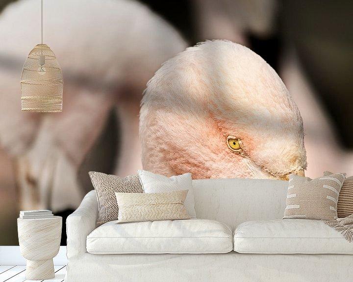 Sfeerimpressie behang: oogcontact met de roze flamingo van Sandra Kuijpers