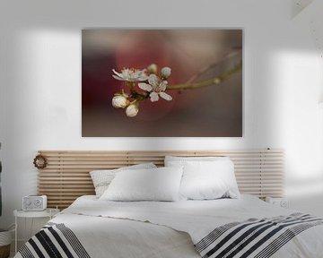 Fleur douce (style japonais) sur Birgitte Bergman