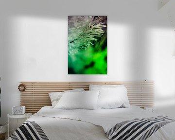 Een twijg van een spar, vol met waterdruppels, abstract uitgevoerd met paarse en groene kleuren. van Robert Wiggers