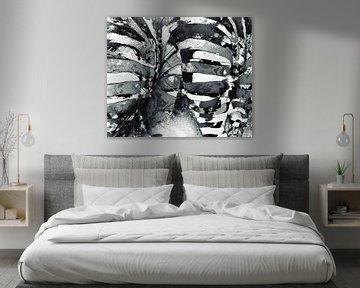 Zebra's  van Anouschka Hendriks