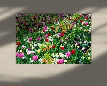 wilde bloemen in tuin