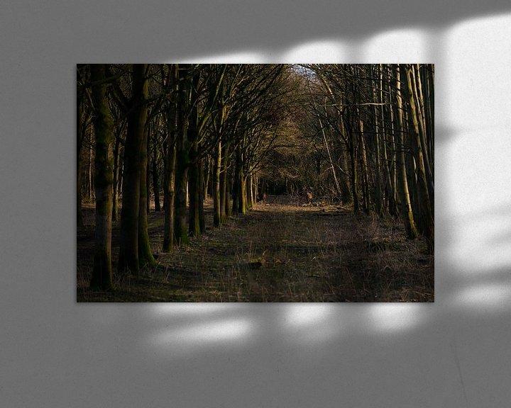 Sfeerimpressie: Oostvaarders plassen van Brian Morgan