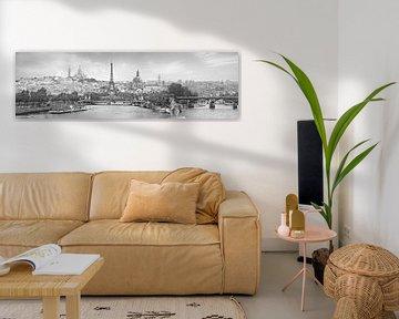 Panorama Parijs met een knipoog