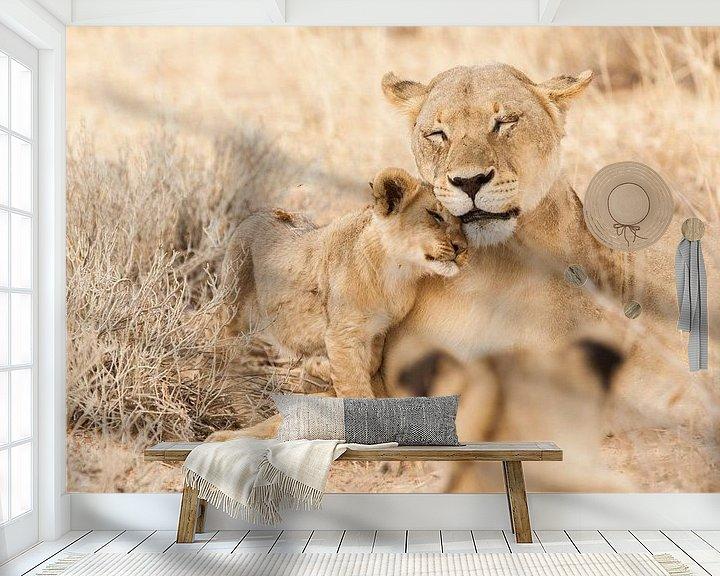 Beispiel fototapete: Mutterlöwe mit Jungem in Botswana von Simone Janssen