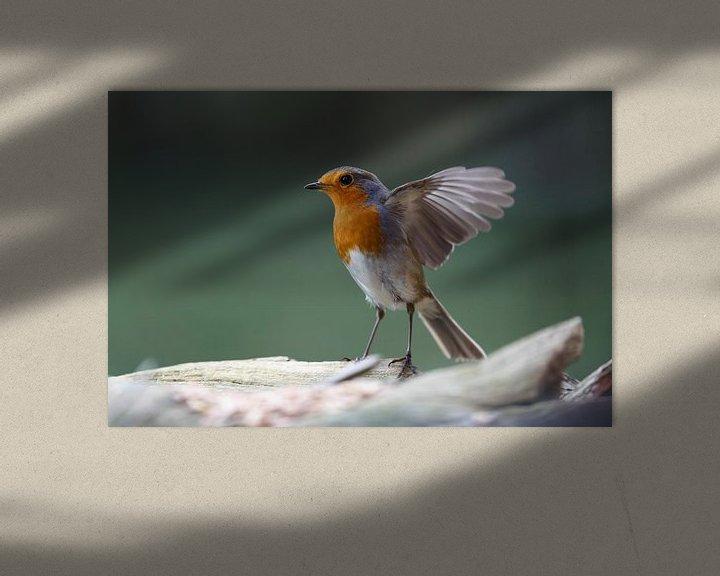 Sfeerimpressie: fladderende roodborstjes van Rolf Pötsch