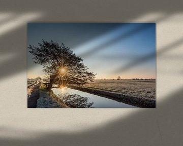 Winter in de polder van John Verbruggen