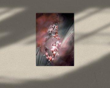 RED SPANGLES no4-Butterflies von Pia Schneider