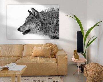 Wolf von Astrid Brenninkmeijer