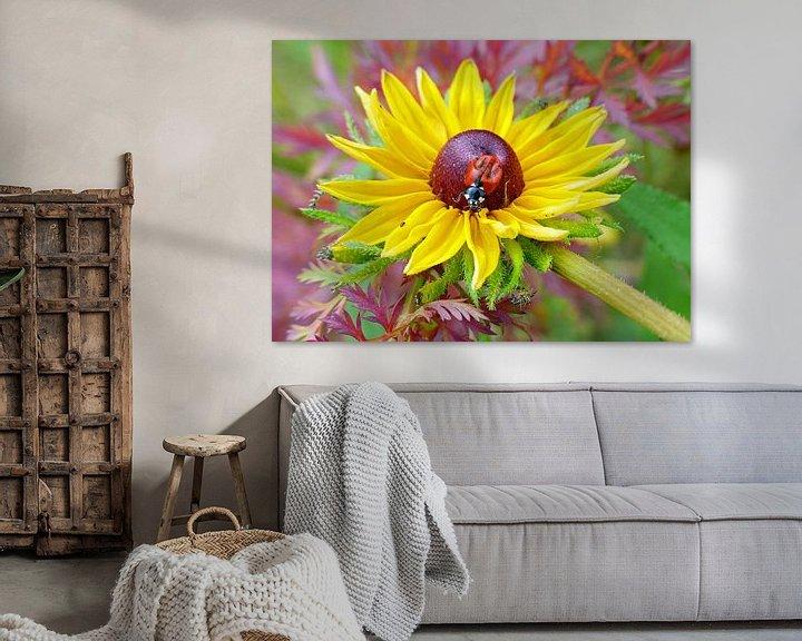 Sfeerimpressie: Gele bloem met lieveheersbeestje van Gonnie van Hove