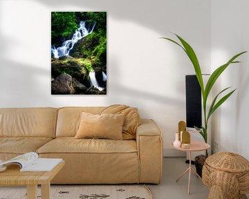 Torc Waterfall, Killarney National Park, Ireland van Colin van der Bel