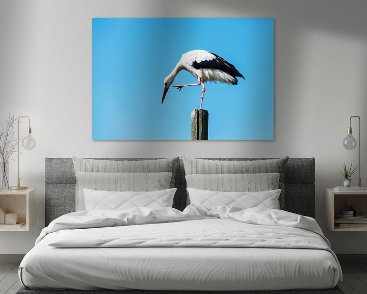 Beispiel: stork standing on wooden pole   von Compuinfoto .
