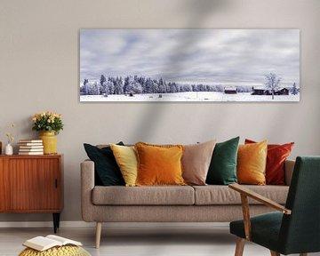 Winter van Hamperium Photography