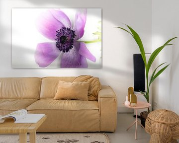 Einzelne purpurrote Blume von Tonny Visser-Vink