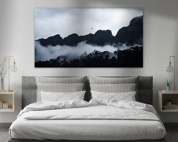 Bergen in Thailand van Bart van Woudenberg