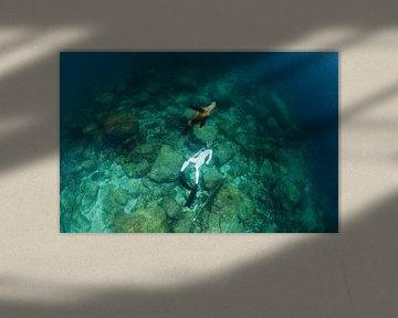 Eén met een zeeleeuw
