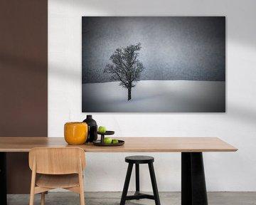 WINTERIDYLLE Einsamer Baum sur Melanie Viola
