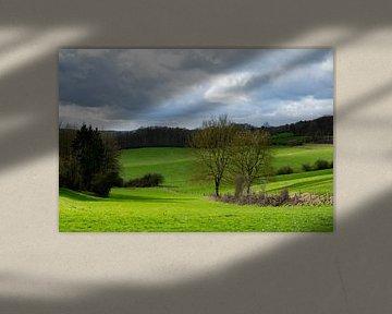 Golvend landschap Ardennen