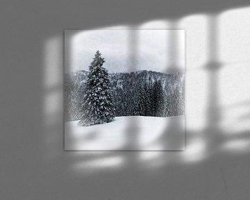 Bavarian Winter's Tale IV van Melanie Viola