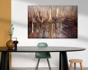 Het ondergelopen hutje in het bos. van Sonja Pixels