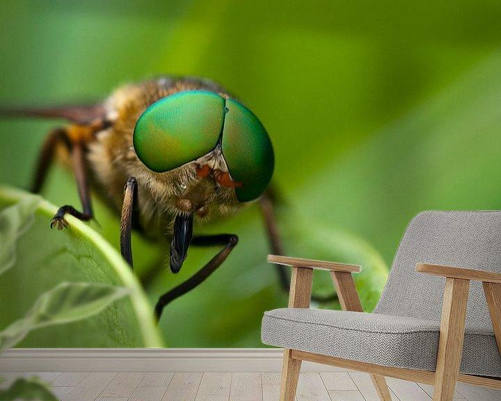 Impression: Vlieg met grote groene ogen sur Miranda van Hulst