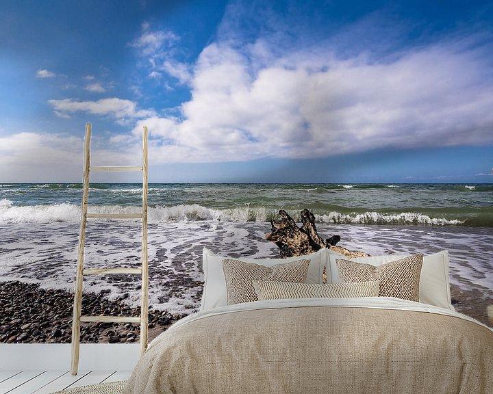 Beispiel fototapete: Treibholz an der Küste der Ostsee von Rico Ködder