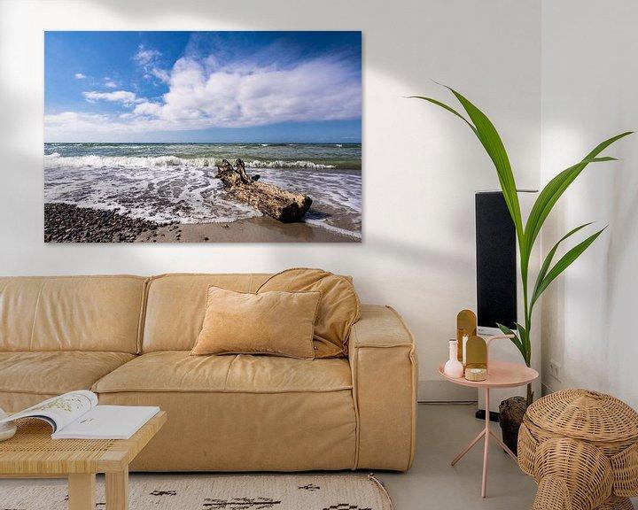 Beispiel: Treibholz an der Küste der Ostsee von Rico Ködder