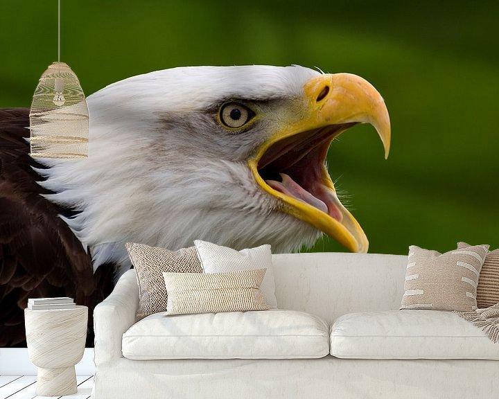Impression: Oiseau de proie sur Miranda van Hulst