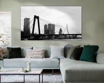 Rotterdam, stad aan de maas van Sander Wesdijk