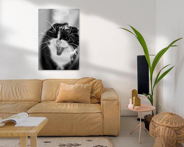 Beispiel: Kat Portret Zwart Wit von Maja Bredschneijder