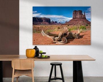 Monument Valley 02 von Peter Bongers