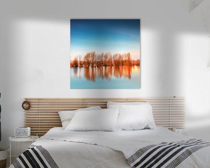 Beispiel: Flooded Trees von Ruud Peters