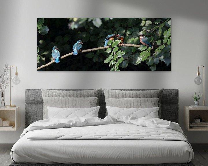 Sfeerimpressie: Vijf ijsvogels op een tak van Jani Moerlands