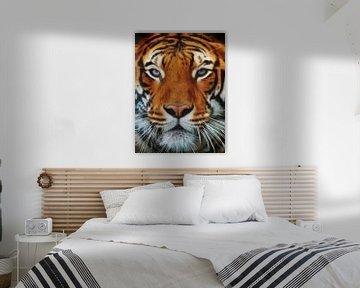 Tiger Portrait von Angela Dölling